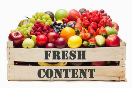 Gestion stratégie de contenu sur Perpignan